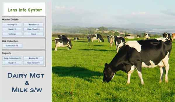 milk dairy software system lans info system